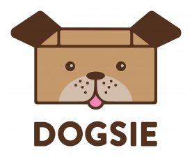 Studenti ČZU přináší radost psům portálem Dogsie