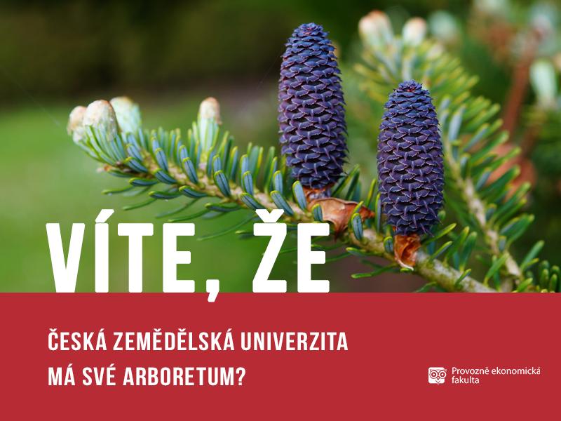 Arboretum ČZU