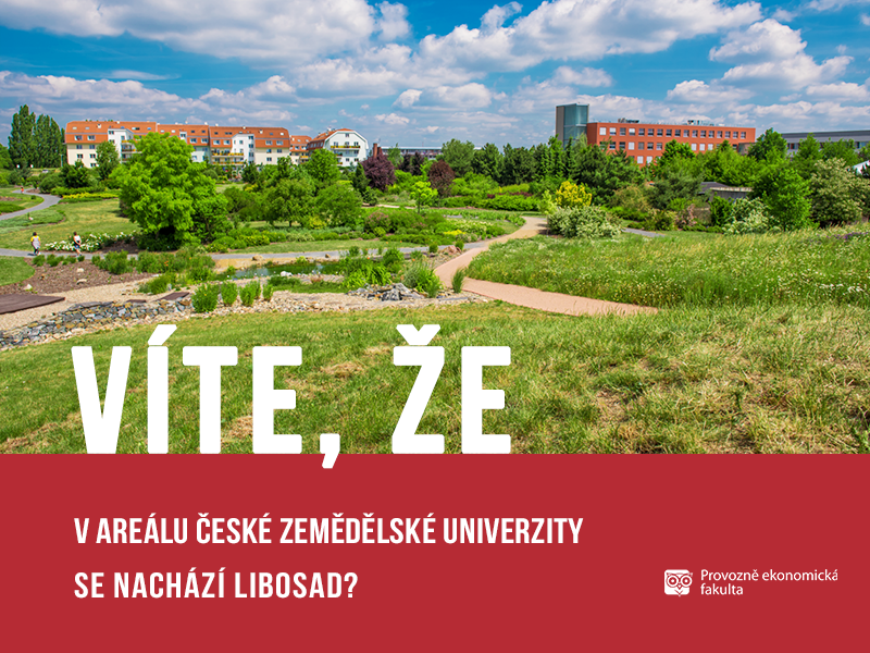 V areálu České zemědělské univerzity je Libosad srůznýi druhy rostlin; autor obrázku Patrik Hácha