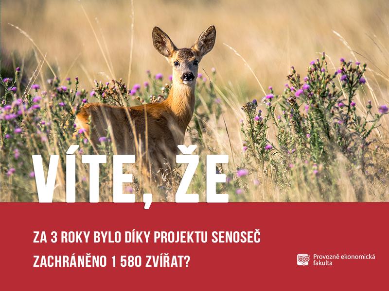 Projekt Senoseč zachránil 1 580 zvířat