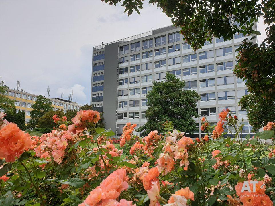 Pohled na rektorát ČZU přes rosárium od Technické fakulty ČZU v Praze.