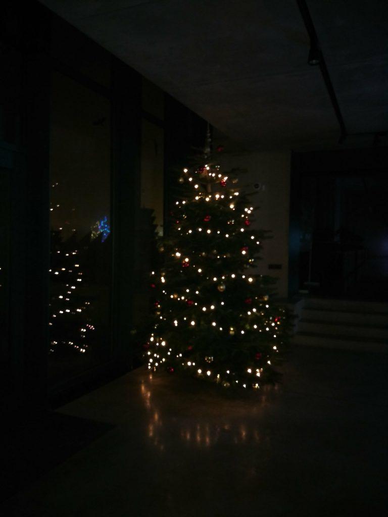 Vánoční strom PEF